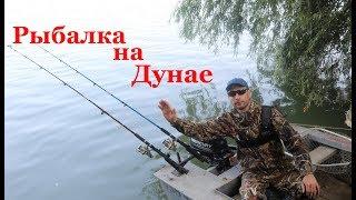 Рыбалка на реке Дунай с моим отцом и тестем ч.1