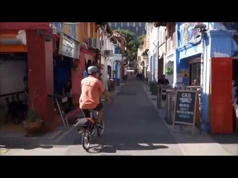 Dahon Boardwalk Folding Bike To Singapore