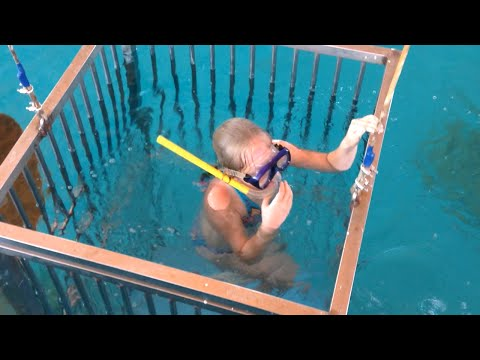 ШОК!!! Ныряю в клетке с АКУЛАМИ! | Swimming with real sharks in the cage