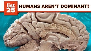 25 Mindblowing Facts That Are Stranger Than Fiction!