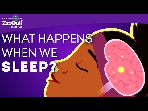What Happens When We Sleep? | 5 Different Sleep Cycles | ZzzQuil