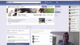 4  Case Study 2 Dog facebook fan page growth 2