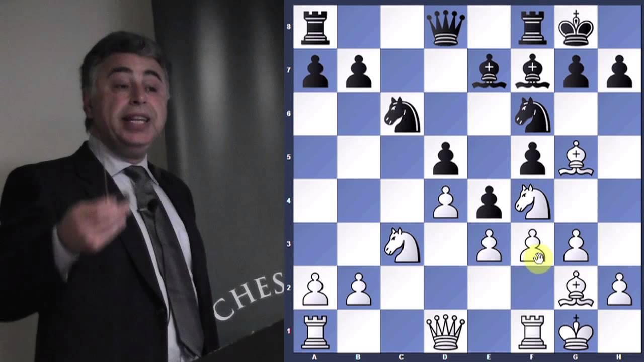 Play Winning Chess Yasser Seirawan Pdf