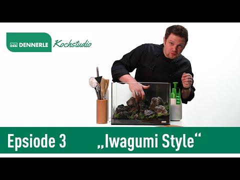 Iwagumi Style im 35L Scaper's Tank | Aquarium nach Rezept Folge 3 | DENNERLE