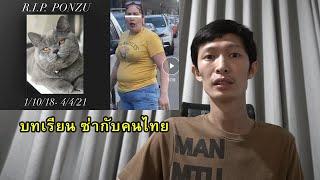 คนในสหรัฐทำกับแมวคนไทย