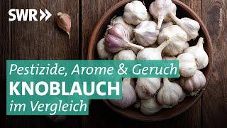 Knoblauch im Test: Wie gesund ist die Knolle wirklich?