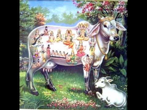 Sri Sudarshanaashtakam - Sri Sudarshanaashtakam
