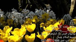 Video Pashto naat gul khuban naat download MP3, 3GP, MP4, WEBM, AVI, FLV Juli 2018