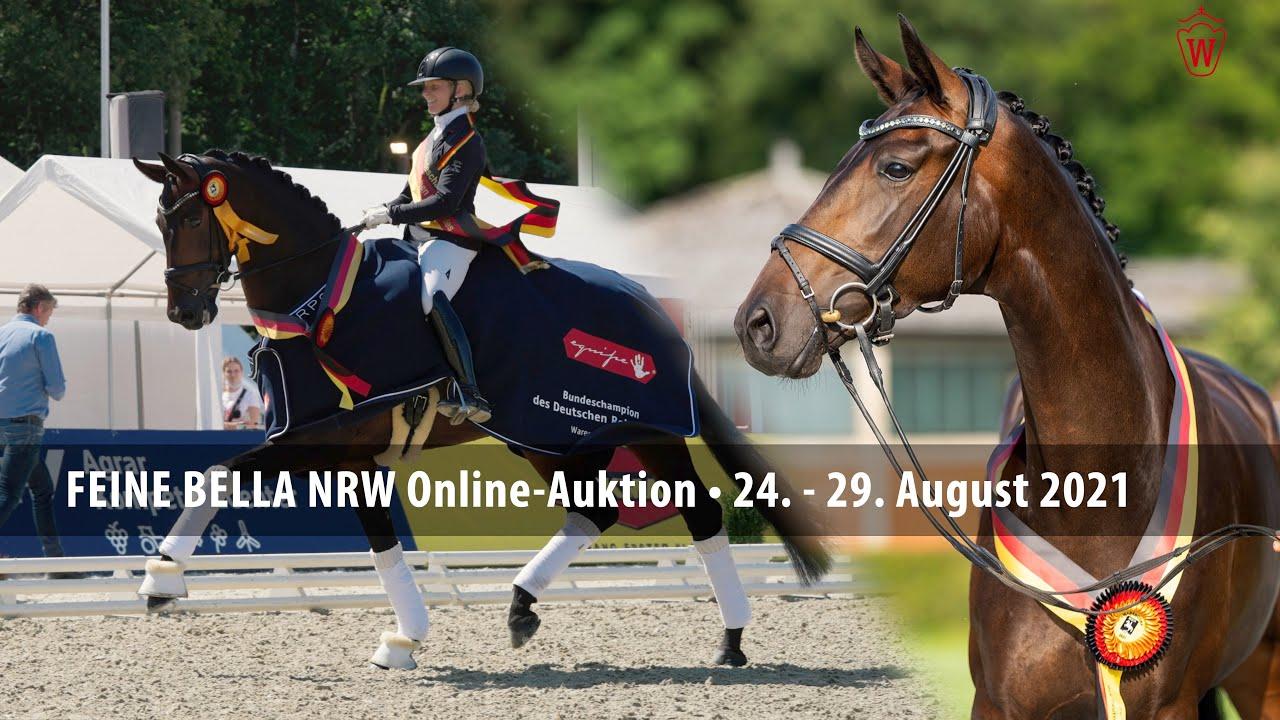 1. Westfälische Online Auktion Spezial - Feine Bella NRW - YouTube