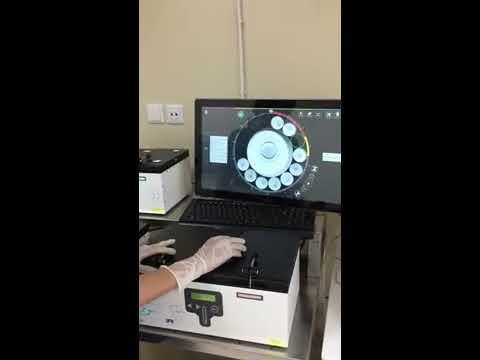 Развитие эмбрионов в режиме реального времени