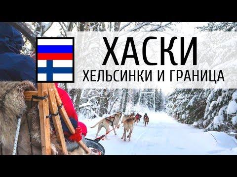 На собаках хаски, Хельсинки и граница Финляндия-Россия. Влог. Часть 3
