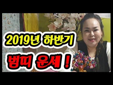 호랑이띠 2019년 운세! 2019년 호랑이띠 토정비결. 범띠 운세! 호랑이띠 운세! 음력 6~12월 하반기 운세!