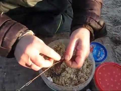 Как варить ячневую крупу для рыбалки