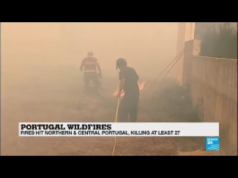 Deadly wildfires rage in Portugal and Spain