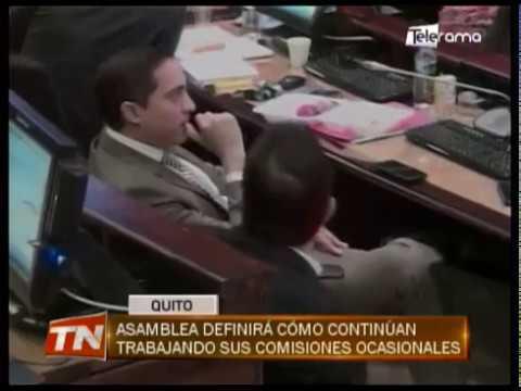 Asamblea definirá cómo continúan trabajando sus comisiones ocasionales
