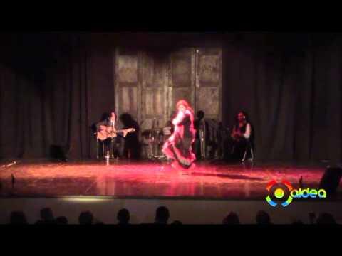 Flamenco a Mi Manera