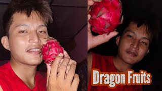 First Time Dragon Fruits | Bodoland Dragon Fruits Price Per Kg💰💰???