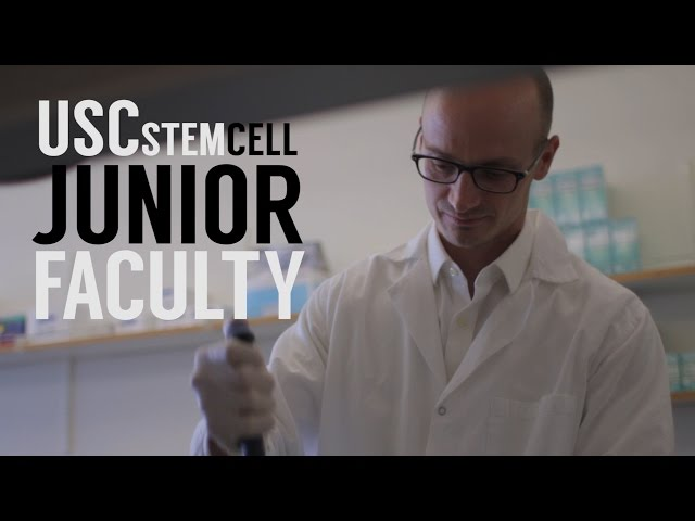 USC Stem Cell Junior Faculty
