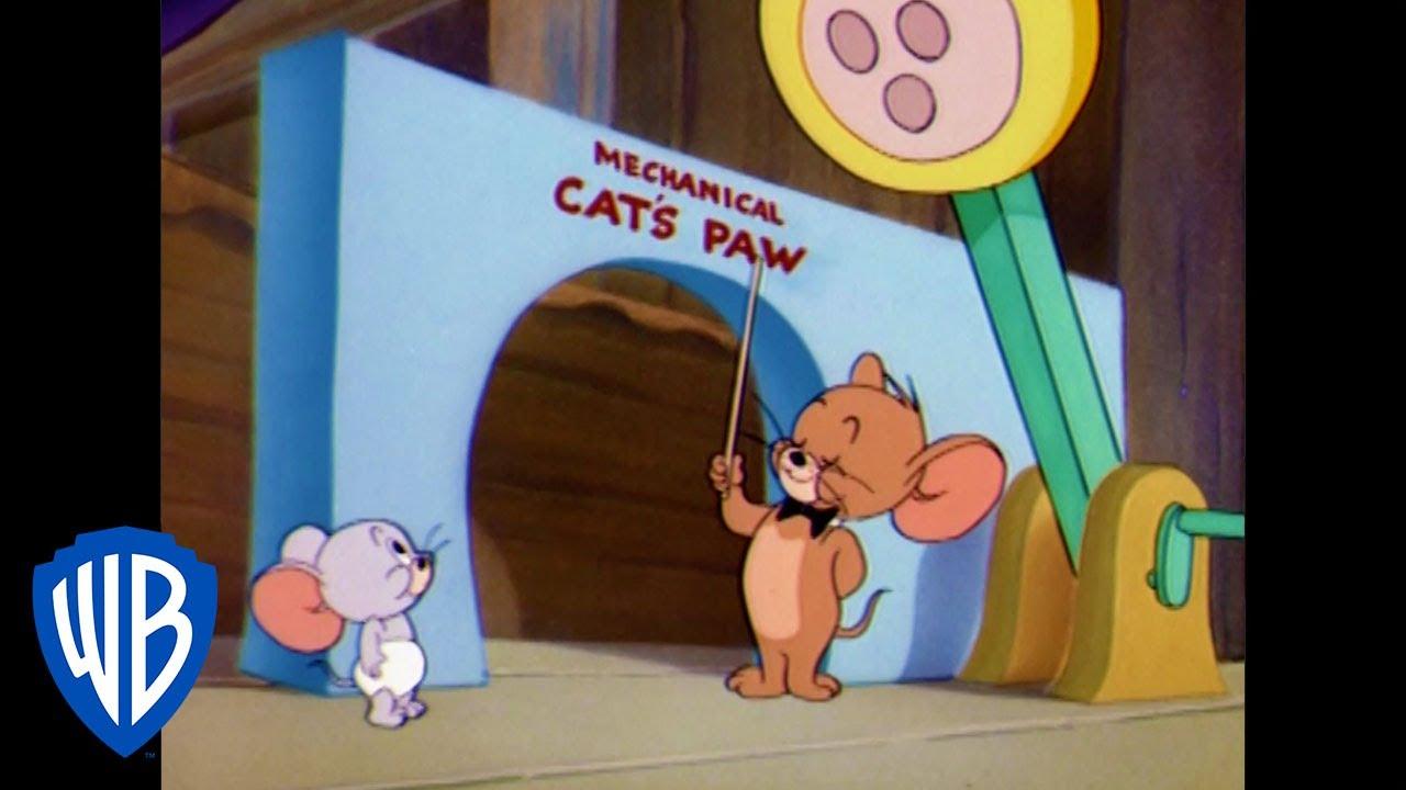 Tom & Jerry em Português | Brasil | O Rato Educado em Casa | WB Kids