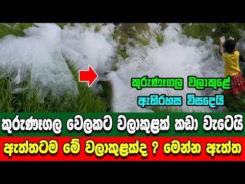 කුරුණෑගල වෙලට කඩා වැටුන වලාකුළේ අහිරහස විසදෙයි - Unbelievable stuff found in Kurunegala