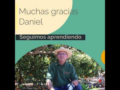 ENTREVISTA A DANIEL RUIZ, CEO DE NARANJAS DANIEL SL