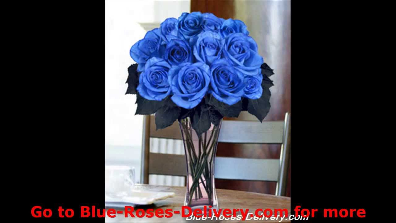 Blue Roses Rare And Exotic Blue Roses Delivery Youtube