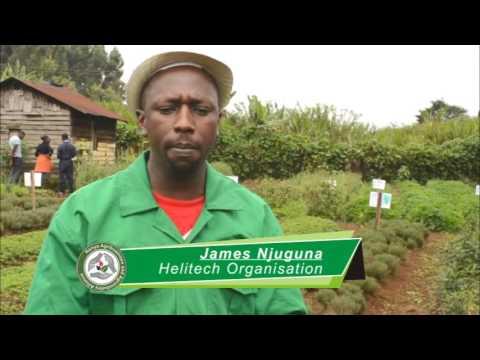 Sustainable Agriculture Through Organic Farming | Kenya