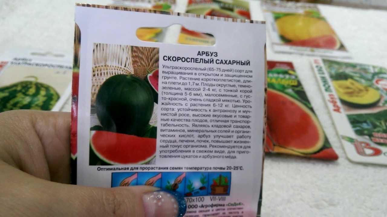 Обзор семян арбуза на 2017 год. - YouTube