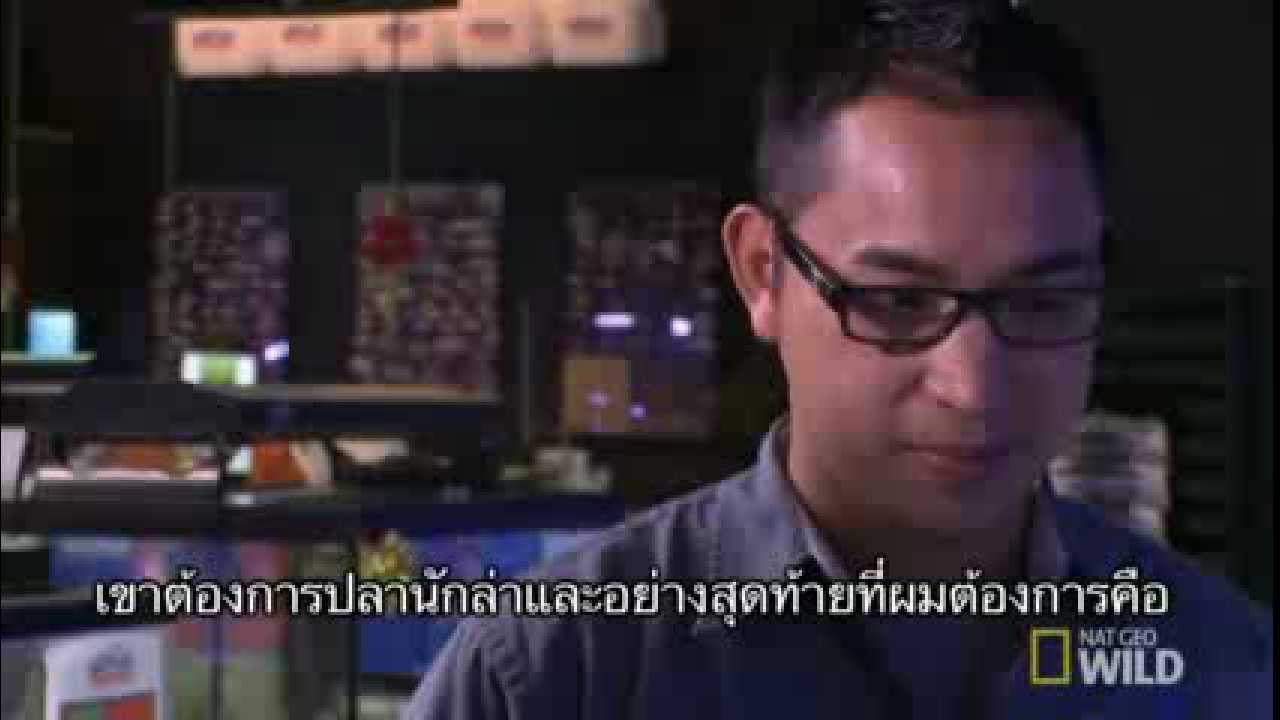 Fish tank kings season 3 -  Fish Tank Kings Nat Geo Wild