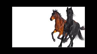 Lil Nas X -Old Town Road ( feat.Billy Ray Cyrus)[REMIX]{1 HOUR}
