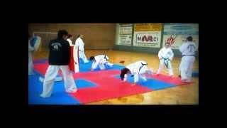 Union Taekwon-do Entrenamiento 2012.wmv