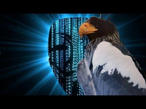 Птицы во сне Часть 3. Орел, Ястреб, Ласточка, Филин, Скворец. Что означают птицы во сне.