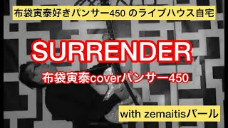 SURRENDER 布袋寅泰coverパンサー450