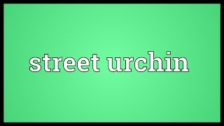 Street urchin Meaning