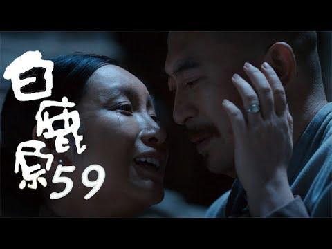白鹿原 | White Deer 59【DVD版】(張嘉譯、秦海璐、何冰等主演)