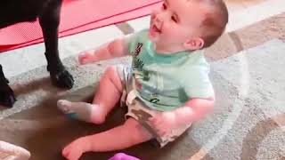 Funny babies trouble with friends - Funniest Baby and Dog Playing Together b...