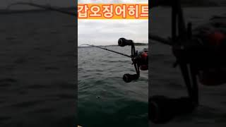 #shorts#fishing#갑오징어낚시 히트영상 먹물 세레머니