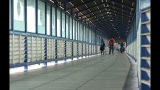 Gambar cover Sky Bridge Solo Resmi Dibuka Untuk Umum
