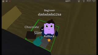 the world's ugliest game of roblox pet minet simuleitor