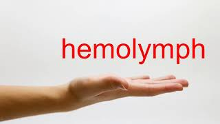 How to Pronounce hemolymph American English
