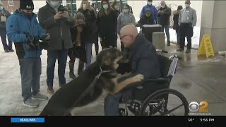 New Jersey Man Reunited With Dog Who Saved Him After Suffering Stroke