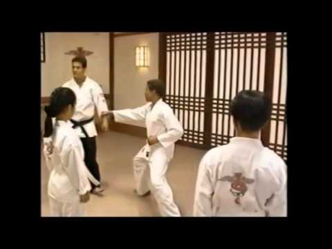 jason david frank austin st john (rangers class Nº 1) (toso kune do, tkd, karate ranger)