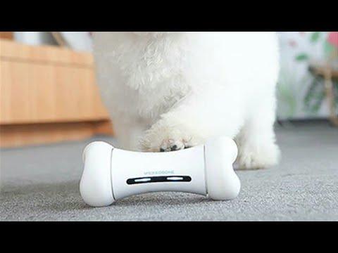 smart-pet-emotional-interaction-bone-toy