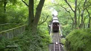 tal y llyn railway dolgoch falls 03 08 15