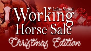 9° Leilão Virtual Working Horse Sale- Christmas Edition