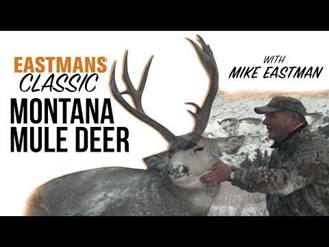 Mule Deer Rut Hunting! With Mike Eastman