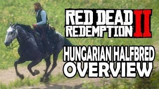 Red Dead Redemption 2 Horses   Hungarian Halfbred Overview