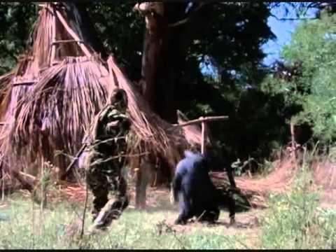 Sho Kosugi vs Ninja Soldiers