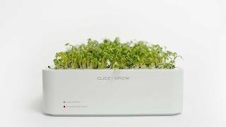 Five Futuristic Smart Digital Garden Tools  Gardening Revolution