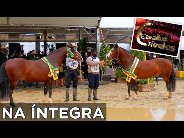 PROGRAMA NA INTEGRA 11/10/2020